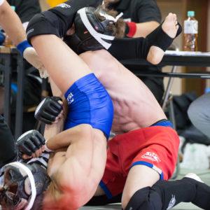 総合格闘技の大会